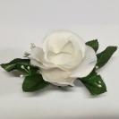 Ruža puk s listom a doplnkom / 1030