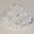 Chryzantéma hlava White / 120022