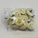Ruža mini / 1234