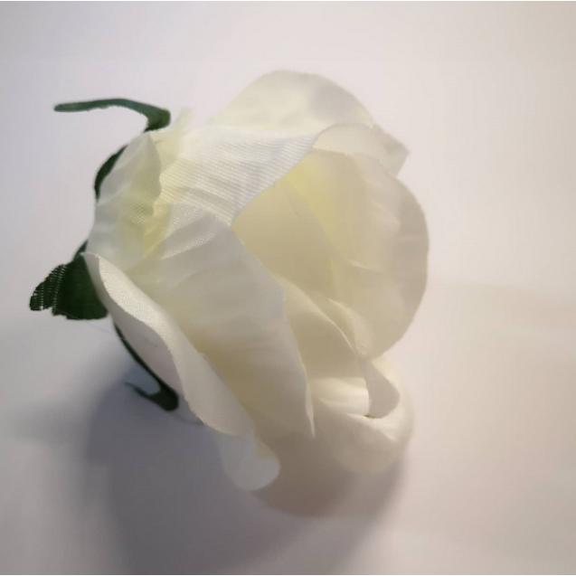 Ruža puk / 1495