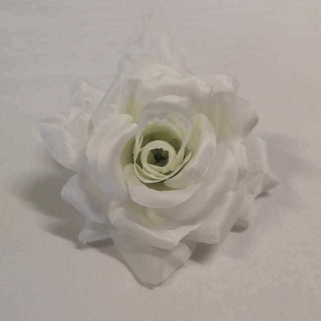 Ruža hl. Cream / 151001