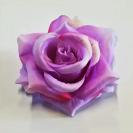 Ruža hlava / 1587
