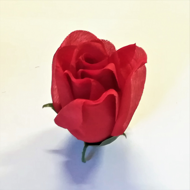 Ruža puk / W826