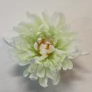 Chryzantéma hlava / 193503
