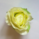 Ruža puk /  2146