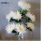 Kytica chryzantema x7/101500