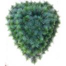091. Srdce veľké plast borovica, V-100cm, Š-90cm