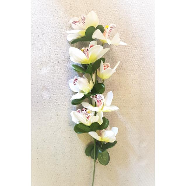 1937 Orchidea 6-mix 56cm