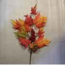 Halúzka jesenná s tekvicou /113401
