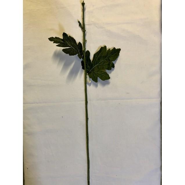 Chryzantémová stonka ks/2100