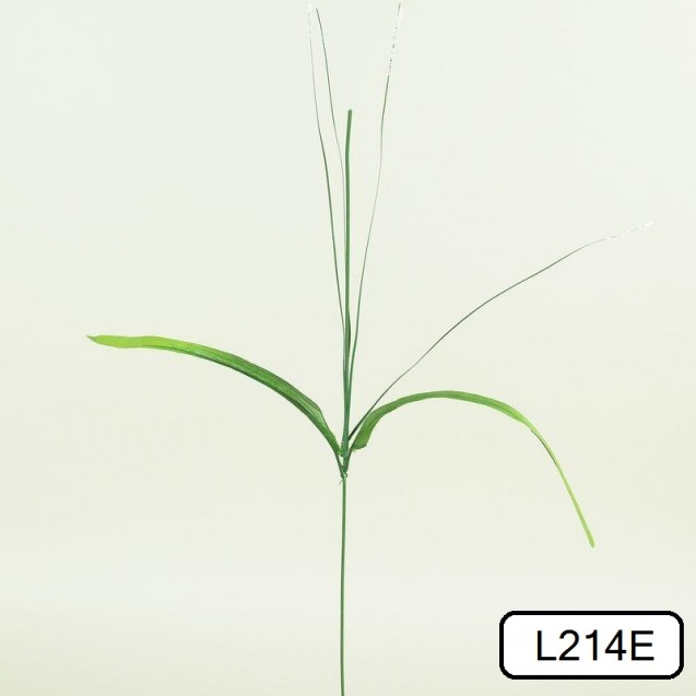 Stonka narcis s trávou / 1214