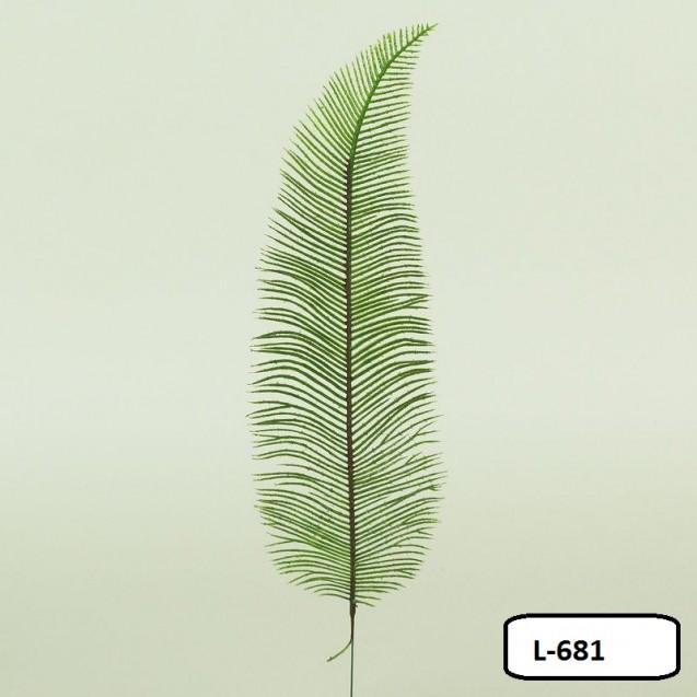 1681 Cycas list 35cm /L681